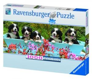 Ravensburger:15116  Швейцарские овчарки 1000 (панор)